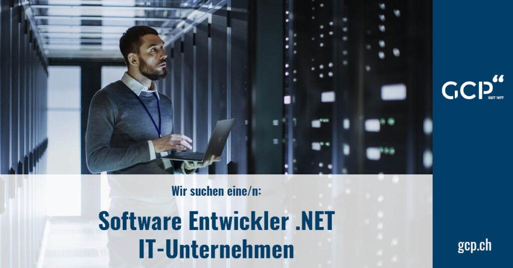 Software Entwickler .NET
